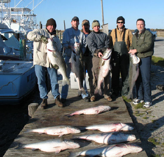 Oregon Inlet Stripers