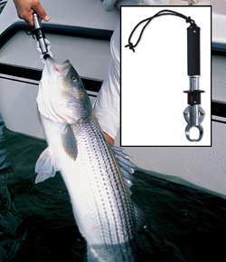 Boga Grip 15 Pounds