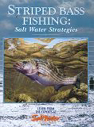 Book - Saltwater Strategies