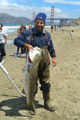 California Striper