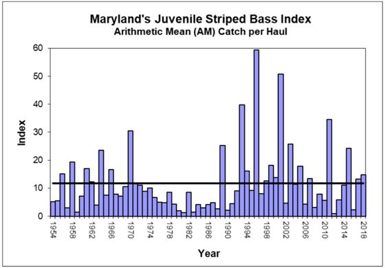 Striped Bass Young of Year Index Chart