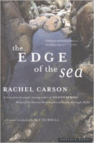 Book - The Edge of the Sea