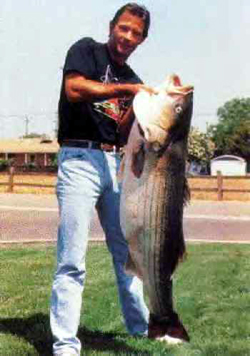 Record Freshwater Striped Bass