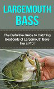 Book - Largemouth Bass: Definitiv Guide