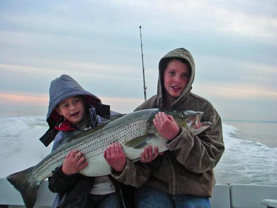 Chesapeake bay striped bass fishing for Chesapeake bay striper fishing