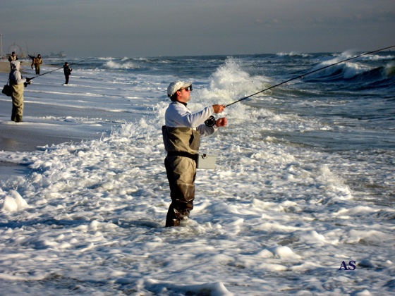 Fly Fishing for 