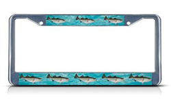 Striped Bass License Plate Holder